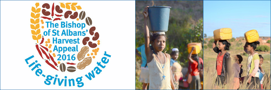 The Bishop of St Albans' Harvest Appeal 2016. Life-giving water. Girls carrying water on their heads