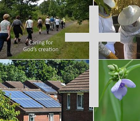 Picture of walking, bees and houses with solar panels