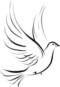 dove-healing