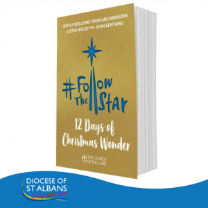 Follow the Star 2019: big discounts on bulk orders during October