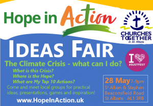 Hope in Action Ideas Fair