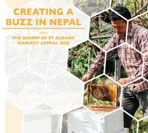 Harvest Appeal image